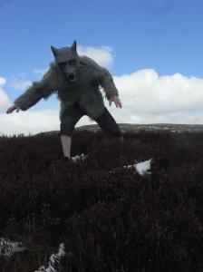 Rannoch Wolf #2 (Em Strang photo)