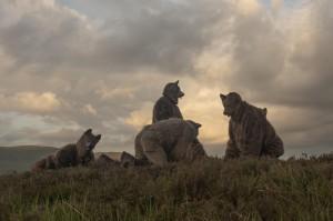Rannoch Wolves